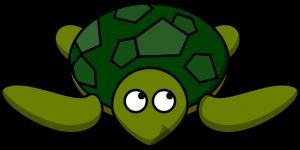 turtle-310825_640